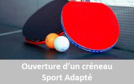 Ouverture créneau tennis de table sport adapté