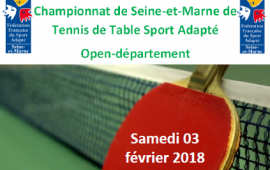 Championnat Départemental tennis de table SA 77